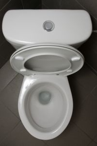 Clogged Toilet   Call Us Today   (727) 475-1474