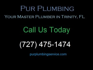 For Design and Repair Services, Call your Local Plumber | (727) 475-1474