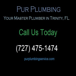 Pur Plumbing Service for Your Plumbing Needs | (727) 475-1474